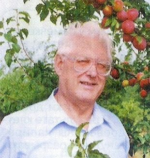 Академік р в. Єрьомін про зливі, абрикосі, підщепах для кісточкових культур