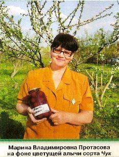 Алича: сорти для середньої смуги росії, догляд за рослинами, кращі сорти сливи