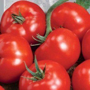 «Асвон» гібридний: кубовидні томати для фермерів і любителів