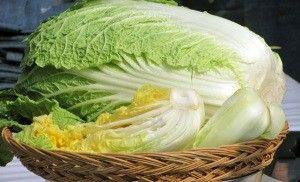 Гостя з-під неба як зберегти капусту пекінську на зиму в домашніх умовах?