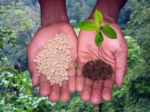 Гумі - універсальне добриво для живлення рослин і родючості грунтів