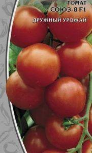 Характеристика, вирощування і догляд, опис сорту гібридного томата «союз 8»
