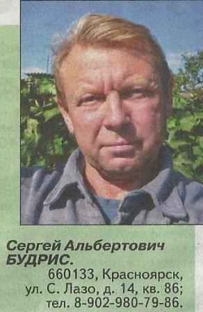 Підсумки сезону в красноярському саду сергея будріс, можливості освоєння плодових культур і винограду