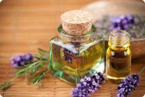 Як позбутися від молі народними засобами: опис ефективних методів, способи застосування ефірних масел і рослин відлякують шкідника