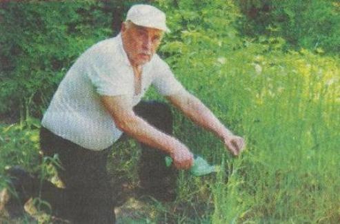 Як забезпечити збереження розсади на своєму городі