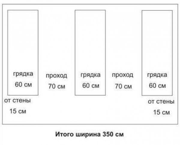 Оптимальні розміри теплиці