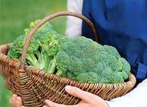 Як правильно зберігати капусту брокколі на зиму в домашніх умовах: в холодильнику або в морозильній камері?