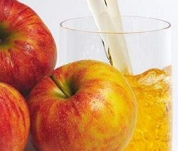 Як зробити соковижималку своїми руками, саморобний прес для яблук і цитрусових.