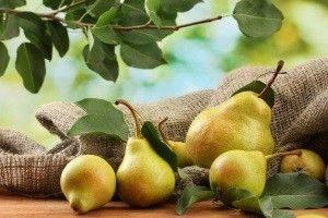 Як зберегти свіжі груші на зиму в домашніх умовах?