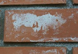 Як прибрати висоли на цегляному будинку, захист цегли від висоли.