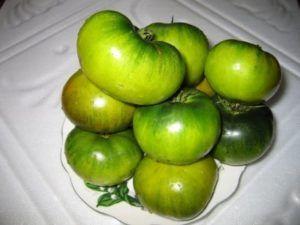 Як виростити томат «болото»? Опис і характеристики сорту