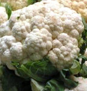 Капуста цвітна, харчові якості, агротехніка