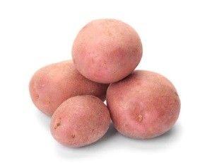 Сорт картоплі Беллароза: опис