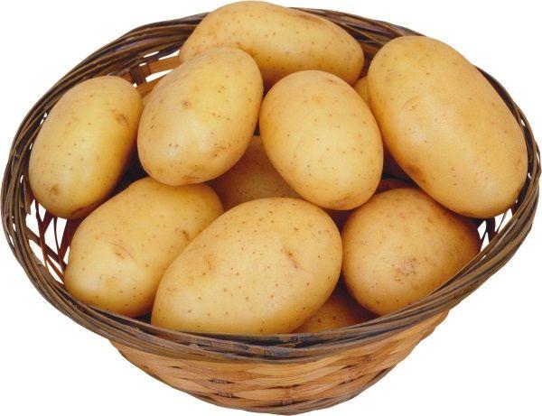 Фото картоплі сорту Колетта