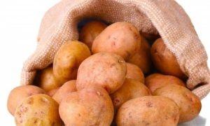 Характеристики картоплі сорту Весна