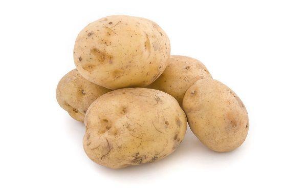 Фото картоплі сорту Весна