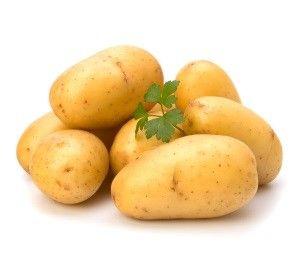 Картопля вінета: смачний, невибагливий, стійкий до хвороб