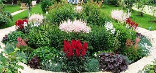 клумба з садовими квітами