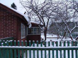 Коренева система плодових і ягідних культур в зимовий період і здатність їх протистояти морозам