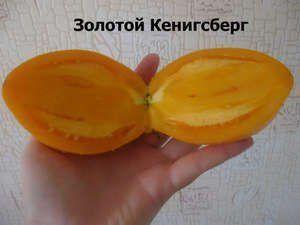 Великі, помаранчеві, що може бути краще? Опис сорту томату «помаранчеве диво»