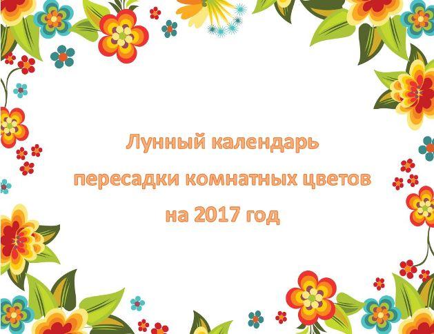 Місячний календар пересадки кімнатних рослин на 2017 рік