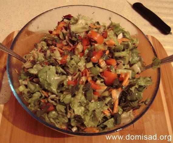 Мега - салат овочевий (здоров`я, щітка і т.д), рецепт з фотографіями.