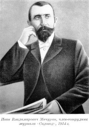 Іван володимирович мічурін, короткі біографічні відомості до портрету