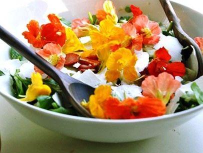Salat-s-nasturciey