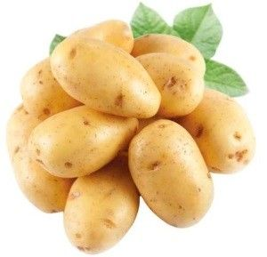 Картопля сорту Каратоп: опис
