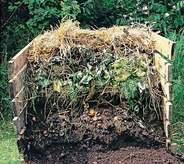 kompost-uvodni