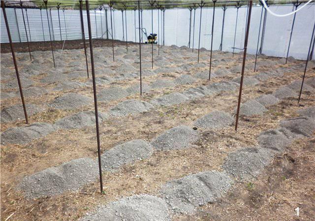 Основи органічного природного землеробства, як зробити грунт пухкої