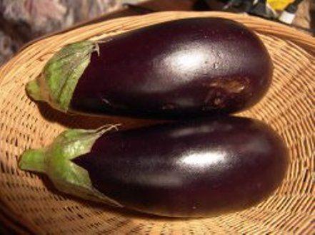 Особливості вирощування баклажана в північних регіонах