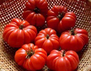 Відмінний сорт томата «американський ребристий»: повний опис помідорів з фото, особливості, переваги і недоліки кущів і плодів