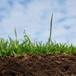 Підготовка ґрунту до весни