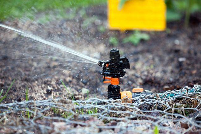 як зробити полив на городі