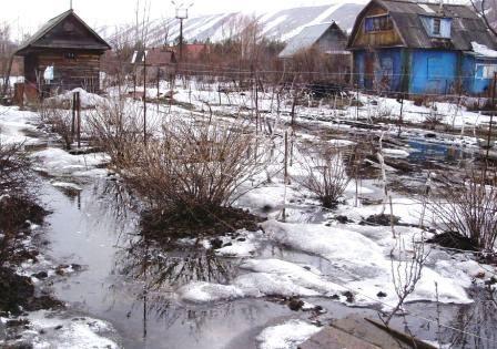 Наслідки весняного паводку в саду