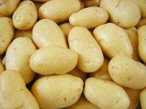 Картопля сорту Латона: опис