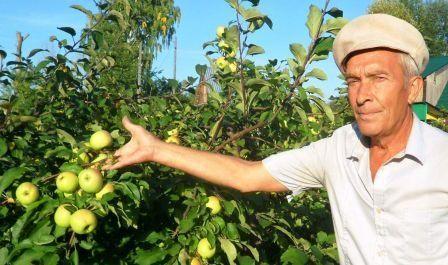 Садівниче співдружність, зв`язок садівників росії