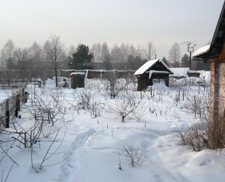 Садовий ділянка в січні, час підготовки до весни