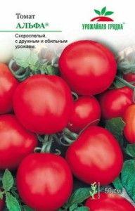 Сорт томата «альфа» - безрассадний, суперранній помідор, опис і характеристики