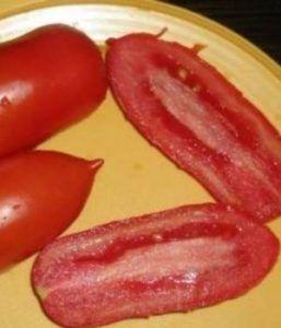 Сорт томатів для ледарів «хохлома»