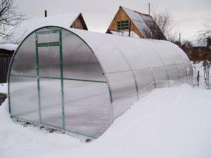 Створюємо зимову теплицю з полікарбонату з опаленням своїми руками: нюанси будівництва та обігріву