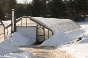 Будуємо зимові теплиці своїми руками: види проектів і пристрій цілорічних конструкцій
