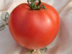 Те, що потрібно для сибірського клімату - сорт томата «іванич» f1: походження і опис помідора