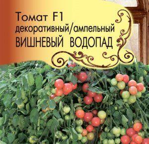 Томат «вишневий водоспад»: ампельний сорт помідора черрі від французьких селекціонерів