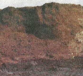 Торф, його походження, застосування в поліпшенні грунту