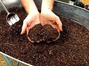 Органічне добриво для картоплі