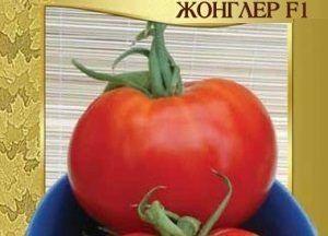 Веселий і смачний томатний гібрид - сорт помідорів «жонглер»